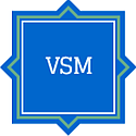 methodology_vsm