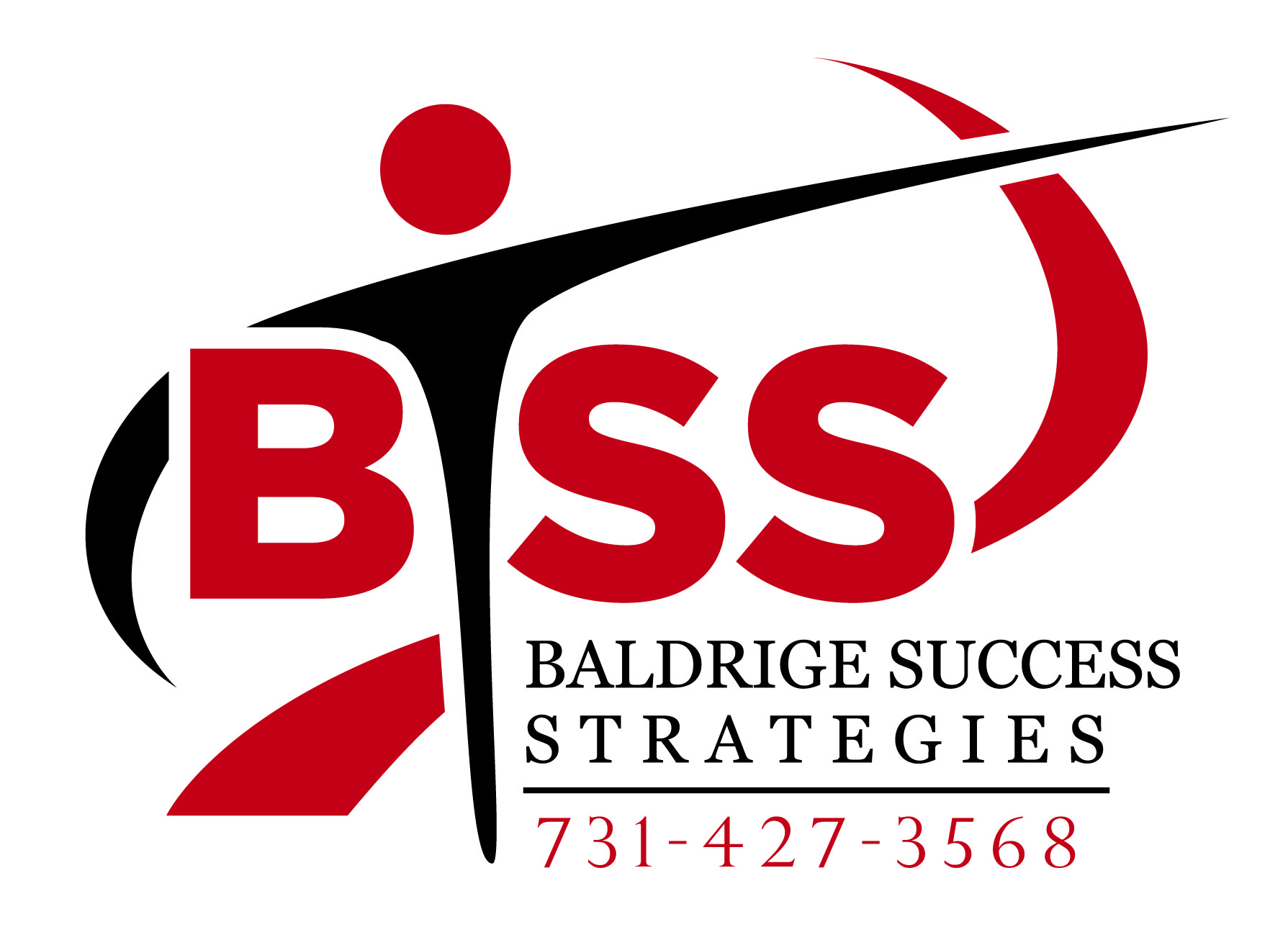 Baldrige Success Strategies