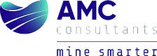 AMC Consultants Partner