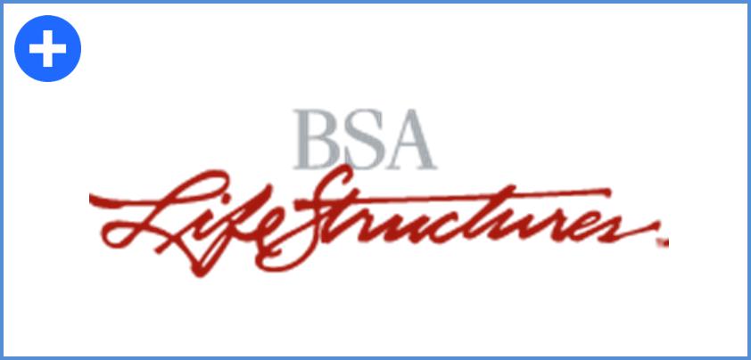 BSA LifeStructures