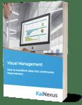 eBook Visual Management